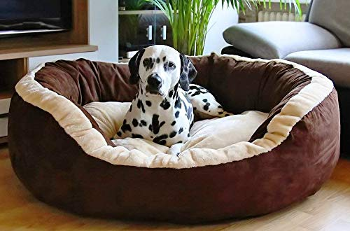 Hiputee Luxurious and Durable Polyester Filled Soft Dual Colour Dog/Cat Bed (Small, Brown) 65x65x20 cms
