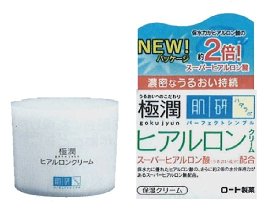 雲和解する補助金肌研 極潤 ヒアルロンクリーム 50g