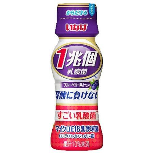 いなば食品 1兆個 すごい乳酸菌ドリンク ブルーベリー果汁入り 65ml ペットボトル 50本入