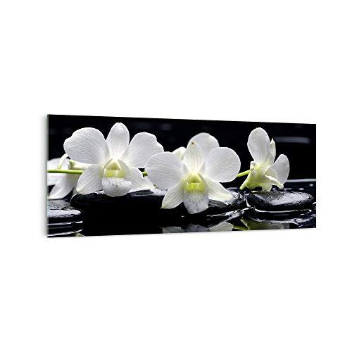 DekoGlas Küchenrückwand \'Weiße Orchidee I \' in div. Größen, Glas-Rückwand, Wandpaneele, Spritzschutz & Fliesenspiegel