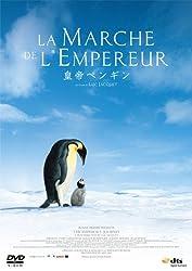 【動画】皇帝ペンギン