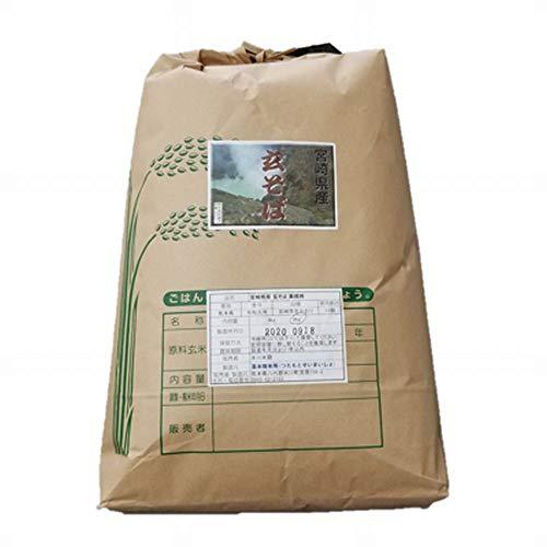 令和2年 宮崎県産 玄そば (そば種子) 8kg 業務用
