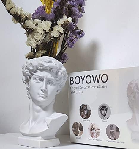 BOYOWO 6'' David Statue Greek Roman Bust Sculpture Head vase,Cute...