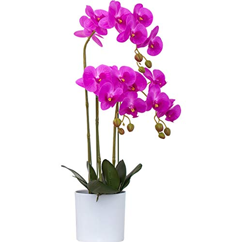 LHY- Simulation Blume Gefälschte Blume Wohnzimmer Indoor-TV-Schrank Blumenschmuck Dekoration Dekoration Kunststoff Floral Tischdekoration Trockenblumenstrauß Dekoration Mode