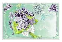 フランス製 ポストカード (白いリボンで束ねられたスミレ) ラ・メゾンド・ヴィオレット elen17