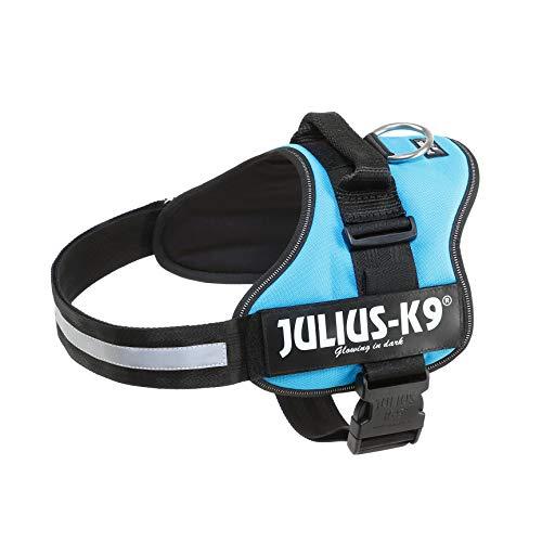 JULIUS-K9 - Arnés para perros, color Azul, talla L / 1