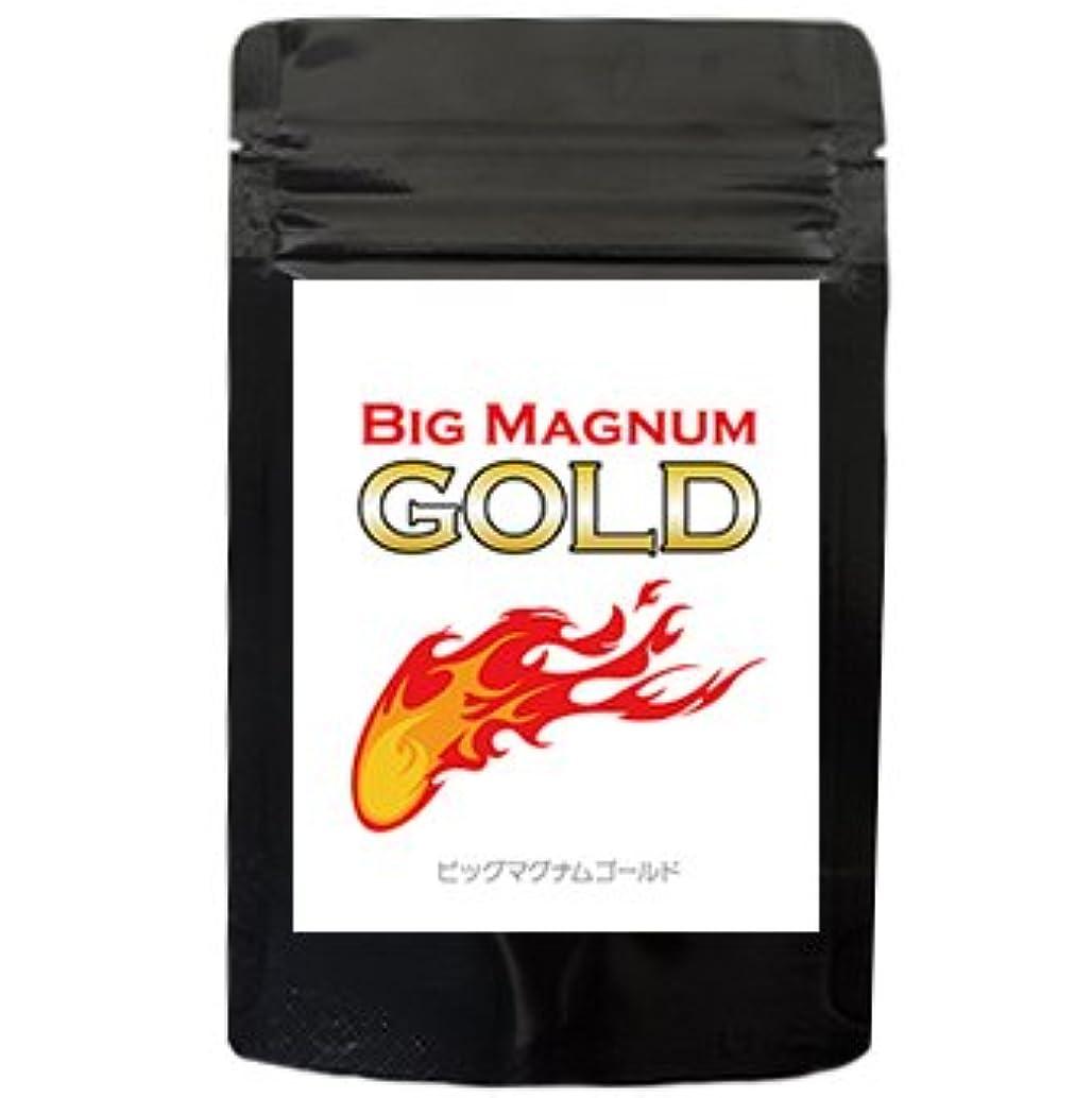 論理的地球売るBig Magnum Gold~ビッグマグナムゴールド~