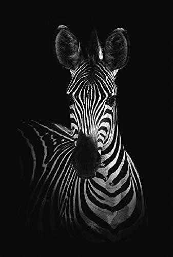 MAIYOUWENG Collection Classici di Legno Puzzle 1000 Pezzi- Zebra Art Pattern -Gioco Intellettuale per Adulti E Bambini