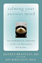 book calming your anxious mind