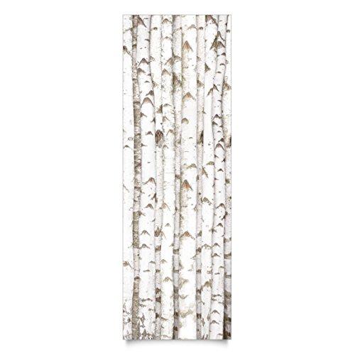 Apalis Klebefolie Birke Birkenwand mit Birkenstämmen Holzfolie selbstklebend 100x100 cm