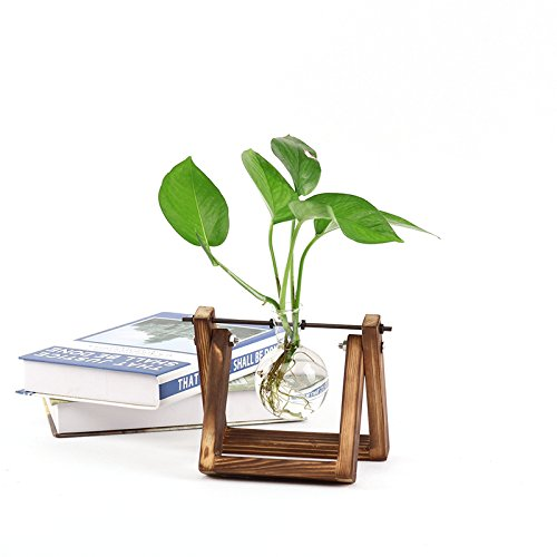 Add some freshness to your desk