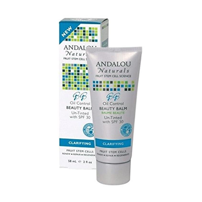 大理石層誇張するAndalou Oil Control Beauty Balm Un-Tinted SPF 30 58ml (Pack of 2) - アンダロウオイルコントロール美容バーム未着色Spf 30 58ミリリットル (x2) [並行輸入品]