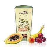 Terra Canis Gartendrops Hunde-Leckerchen I vegetarische Premium Snacks für Hunde in echter Lebensmittelqualität Aller Rohstoffe I Gartendrops mit Obst & Kokosmehl I Getreidefrei & glutenfrei