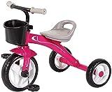 Cxjff Triciclo Luz Kid, Cochecito portátil y Seguridad 1/3/2/6 años de Edad los niños de Bicicleta portátil y Seguridad del Asiento del niño (Color: Rosa) (Color : Pink)