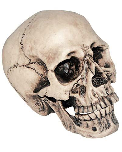 Horror-Shop Anthropologie Totenschädel als Gruseldeko