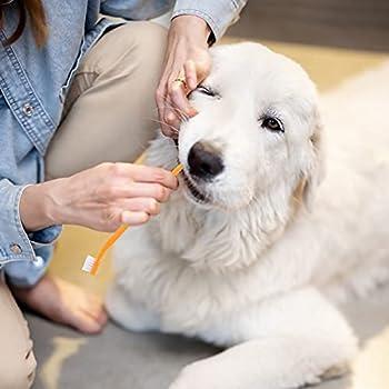 TGFIX 12 PCS Brosses à dents pour chiens,Brosse à Dents de Doigt ,En silicone souple avec 2 brosses à dents à double tête nettoyer hygiène,élimine débris alimentaires pour animal chiens et chat
