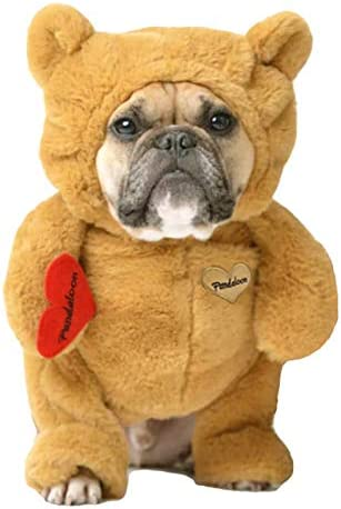 Pandaloon Teddy Bear Dog and Pet Costume Set AS SEEN ON Shark Tank Walking Teddy Bear with Arms product image