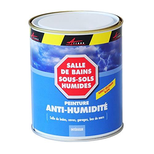 Peinture anti humidité mur humide plâtre béton placo cave sous-sol salle de bain sdb anti...
