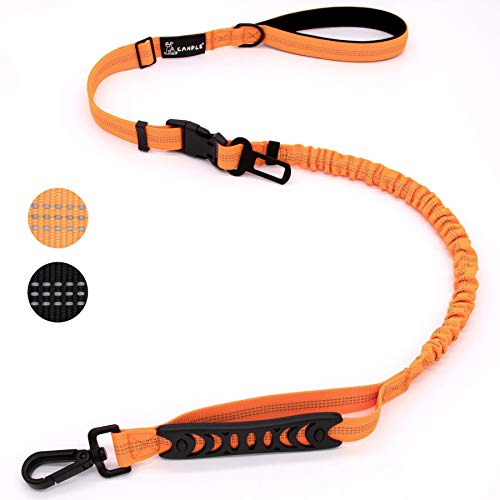 Canple Dog Leash multifuctional with car seat Belt Buckle for Medium to Large Dogs No Pull Shock Absorbing Strong Bungee Reflective Dog Training Leash 4-6 ft 2 Padded Traffic Handle