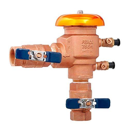 Febco 765EBV 1 inch NPT Bronze Pressure Vacuum Breaker 765-1 BV