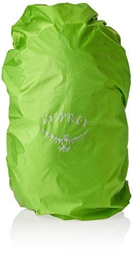 Osprey Hikelite 18 Hiking Backpack, Aloe Green