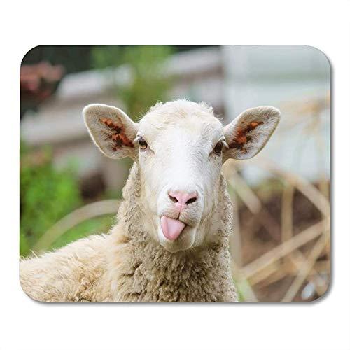 Alfombrillas de ratón animal divertido oveja retrato de mostrar lengua cordero cara de ganado alfombrilla de ratón de granja para computadora portátil, accesorios de computadoras de escritorio mini su