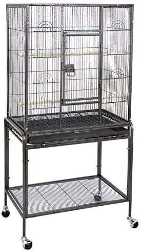 Best Bird Cages For Conures