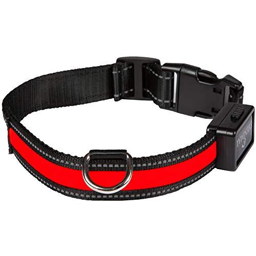 NUM AXES 01830603 Collar Eyenimal con USB Rojo - L