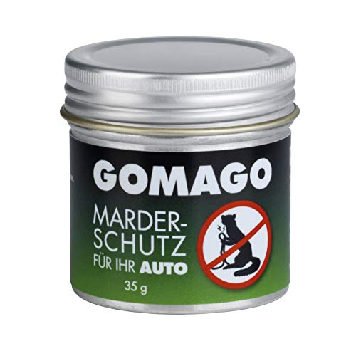 GOMAGO Ihr Auto Bild