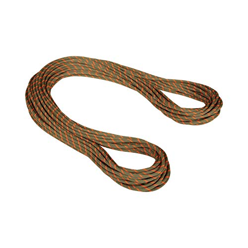 Mammut Alpine Dry Rope 8,0 mm Dry - boa/Safety Orange LG 30