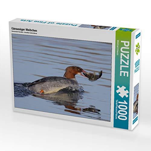 CALVENDO Puzzle Gänsesäger Weibchen 1000 Teile Lege-Größe 64 x 48 cm Foto-Puzzle Bild von Winfried Erlwein