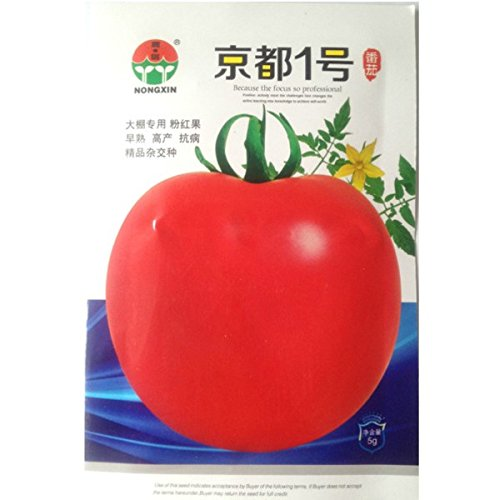 Niveau Aaaaa 20 Pcs / bag 9 genre de couleur citrouille Rare Graines Jardin Outdoor Vegetable Seed Plants Facile Cadeau Sent