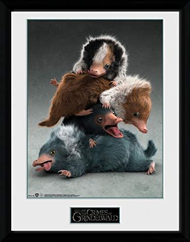 1art1 Phantastische Tierwesen 2-2, Nifflers Gerahmtes Bild Mit Edlem Passepartout | Wand-Bilder | Kunstdruck Poster Im Bilderrahmen 40 x 30 cm