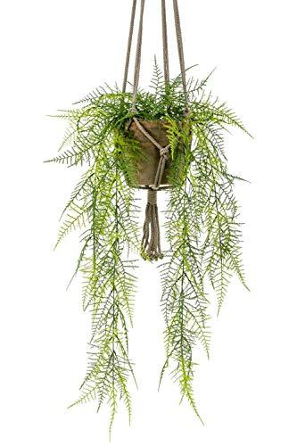 PARC Network Kunstpflanze Asparagus, Blumenampel, Terracottatopf, 80cm - spargel Dekoration - Kunst spargelpflanze - künstliche blumenampel