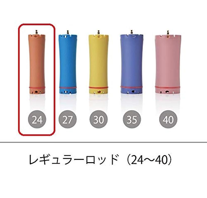 敗北適格ペインティングソキウス 専用ロッド レギュラーロッド 24mm