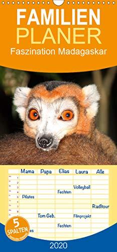 Faszination Madagaskar - Familienplaner hoch (Wandkalender 2020 , 21 cm x 45 cm, hoch): Ein Streifzug durch die Wunderwelt Madagaskars. (Monatskalender, 14 Seiten ) (CALVENDO Orte)