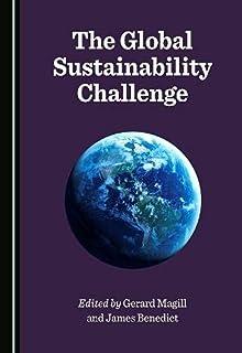 The Global Sustainability Challenge