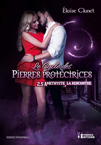 Améthyste, la rencontre: Le Cycle des Pierres Protectrices, T2.5 PDF Books