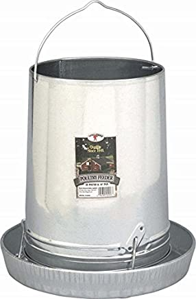 Hanging Poultry & Gamebird Feeder with Feed Pan, 30 Lb Galvanized Steel