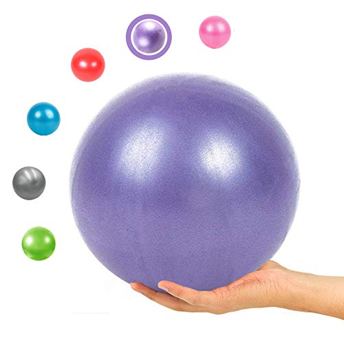 9 Inch Exercise Pilates Ball Mini Exercise Barre Ball for Yoga,Stability Exercise Training Gym Anti Burst and Slip Resistant Balls Physical Therapy Improves Balance, Core Strength, Back Pain Posture