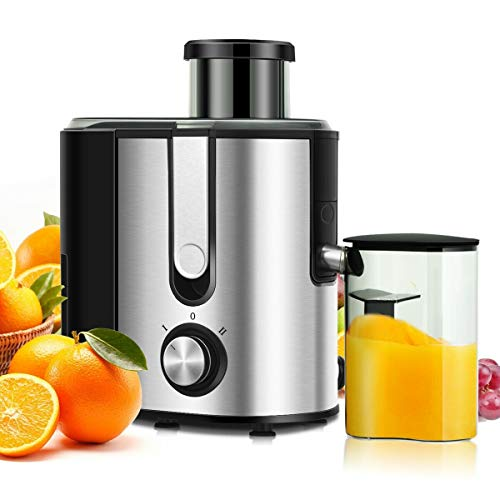 ARLIME Centrifugal Juicer Machine Juicer Extractor Dual Speed, BPA Free, Easy to Clean, Detachable, Stainless Steel, ARLIME Juicer extractor for Fruit and Vegetables