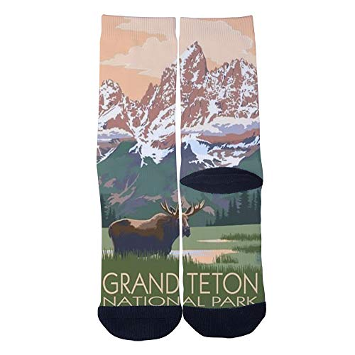 Men's Women's Custom Grand Teton National Park travel poster Socks 3D Print Novel Creative Casual Crew Socks Black
