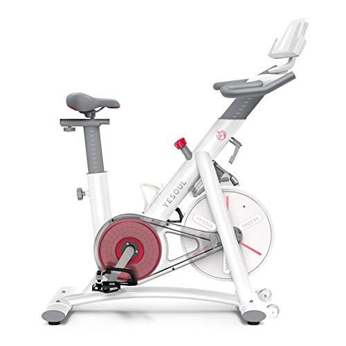 Yesoul S3 Crosstrainer para casa, bicicleta estática, plegable, niveles de resistencia ajustables, bicicleta de spinning, fitness, resistencia magnética (color blanco)