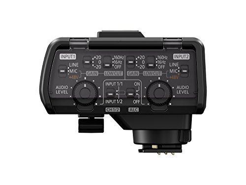 Panasonic Professional XLR Audio Video Microphone Adaptor with 2 XLR Terminals – Accessory Compatible with LUMIX GH5, GH5S, S1 and S1R Mirrorless Digital Cameras - DMW-XLR1, Black