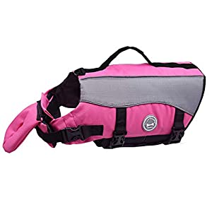 Vivaglory Dog Life Jackets with Extra Padding for Dogs, X-Large – Pink
