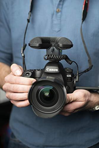 Sennheiser MKE 440 - professionelles Stereo-Richtmikrofon für Kameras, schwarz