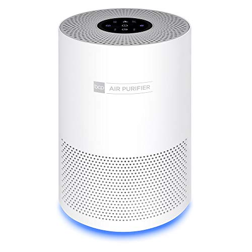 Best Choice Products Air Purifier for Home, Large Room Up to 140 Sq Ft w/True HEPA Filter to Eliminate Allergens, Bacteria, Smoke, Dust, Pet Dander, Pollen w/ 3-Speed Fan, Sleep Mode, Child Lock