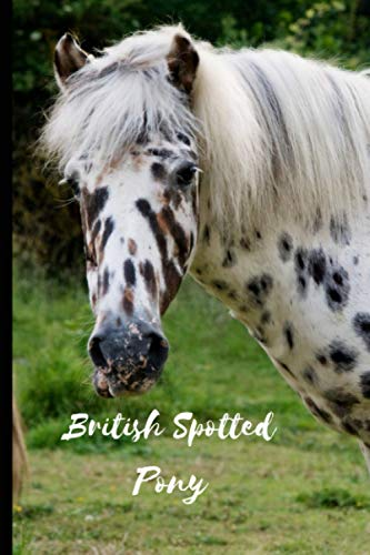 British Spotted Pony: Journal and Notebook - Composition Size (6'x9') With 120 Lined Pages, Perfect for Journal, Doodling, Sketching and Notes