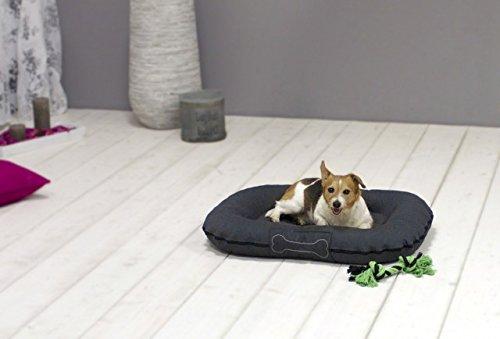 SUN GARDEN Pet Collection Hundekissen Murphy Premium waschbar durch Reißverschluß Farbe: Grau Größe: S = ca. 80x60x12 cm