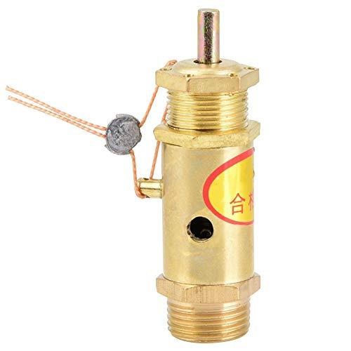 Válvula de presión de liberación G3 / 8, válvula de seguridad tipo resorte para generador de vapor de caldera(10kg)